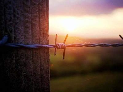 CAN YOU USE BARBED WIRE WITH ELECTRIC FENCES