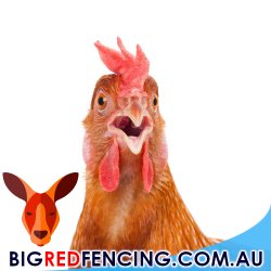 Electric Fence For Poultry