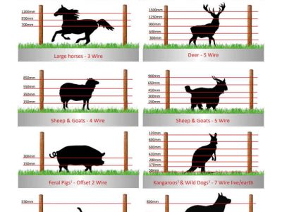 JVA Electric Fence Wire Heights for cows horses deer sheep and goat pigs kangaroos dogs cats